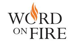Word on Fire - Youth Ministry video resource